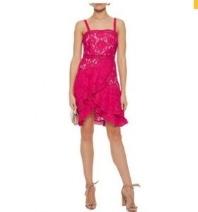 Alice and olivia Angelita lace dress